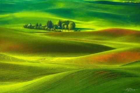 Healing effect of Nature Photographs