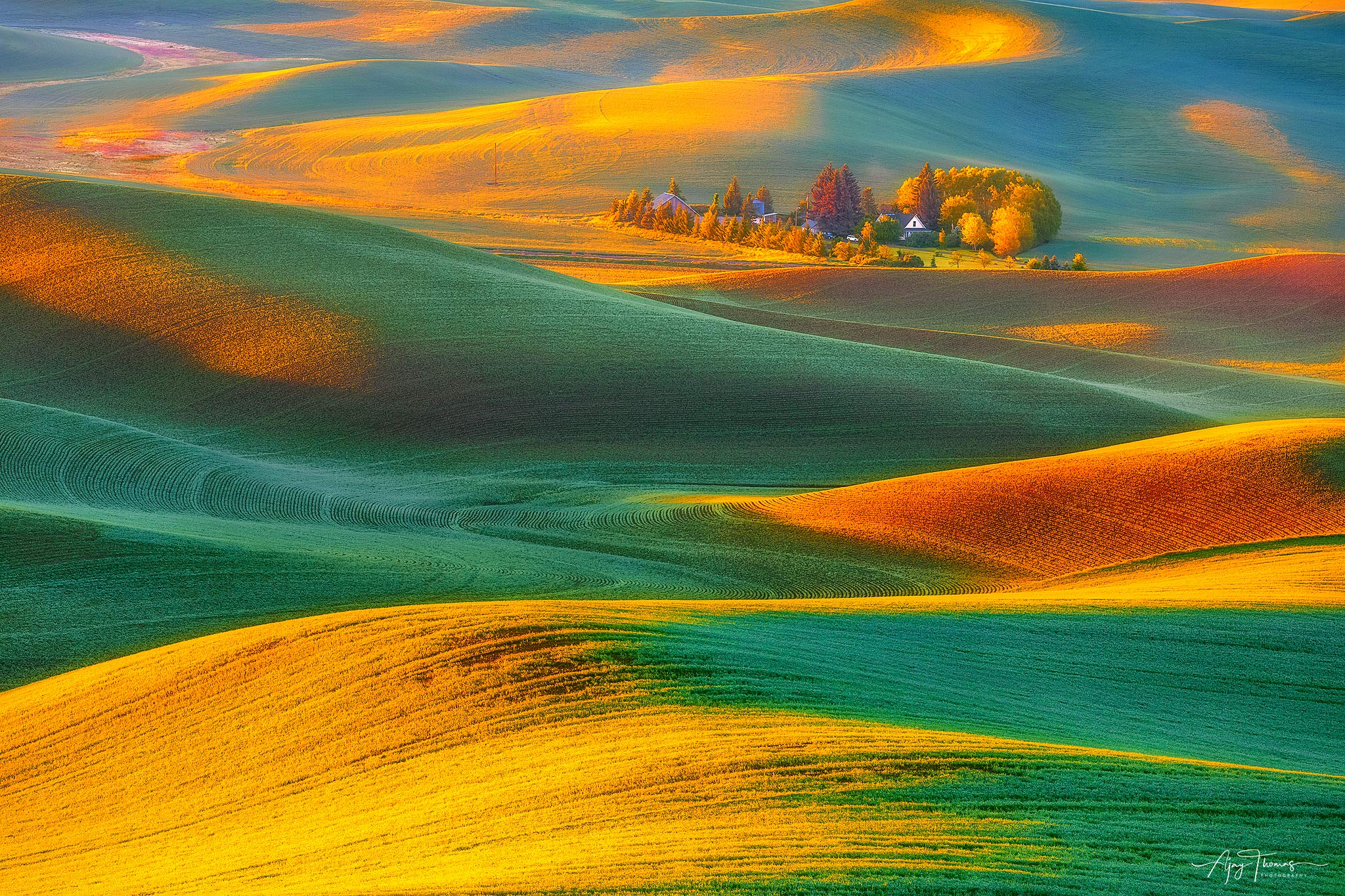 Fine art limited edition of 100-A solo farmhouse captured in the rolling hills of Palouse in the morning sun. When warm light...