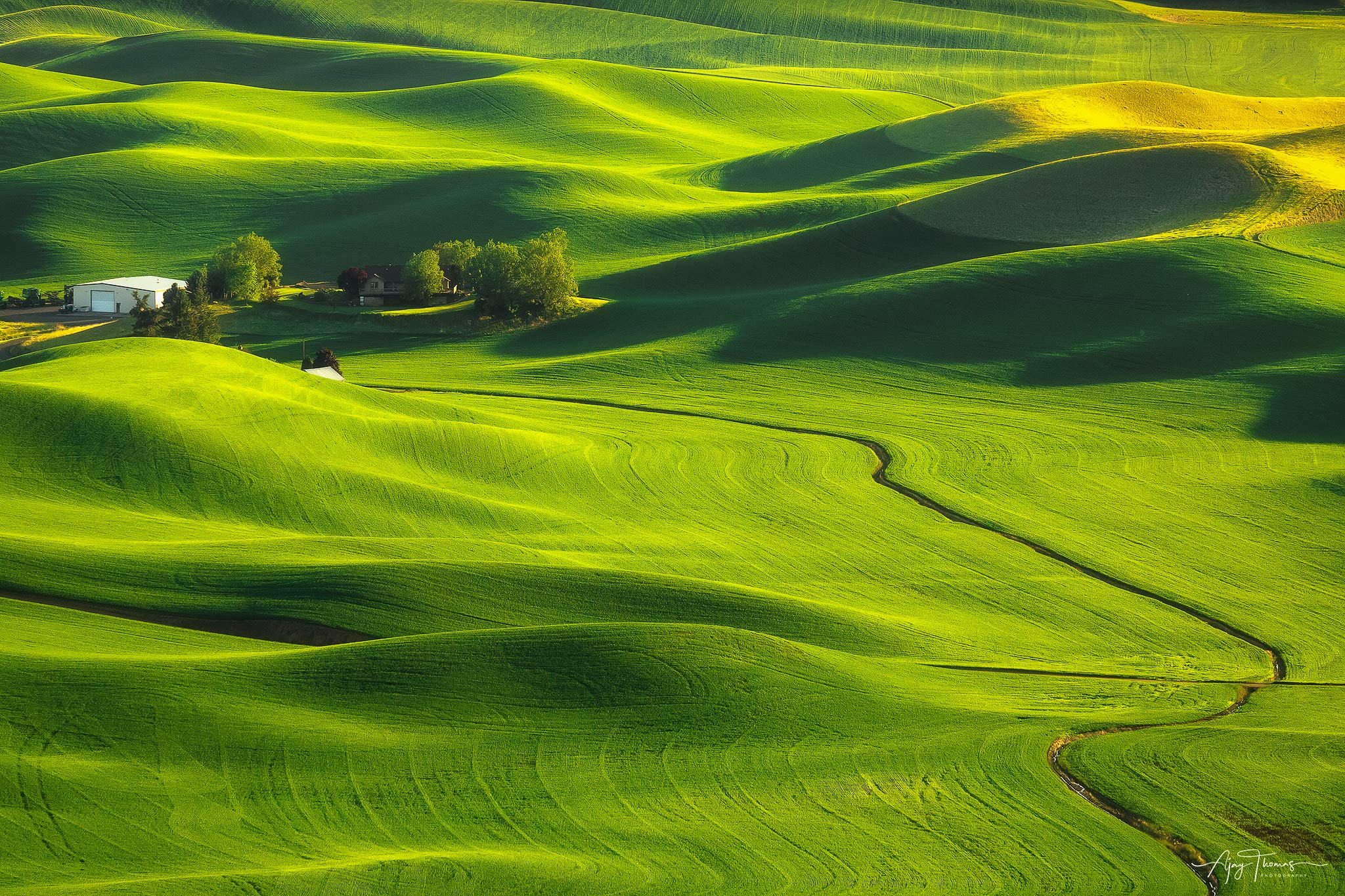The Palouse area in Washington state  is a photographer's dream  located near the towns of Colfax and Pullman . The region...