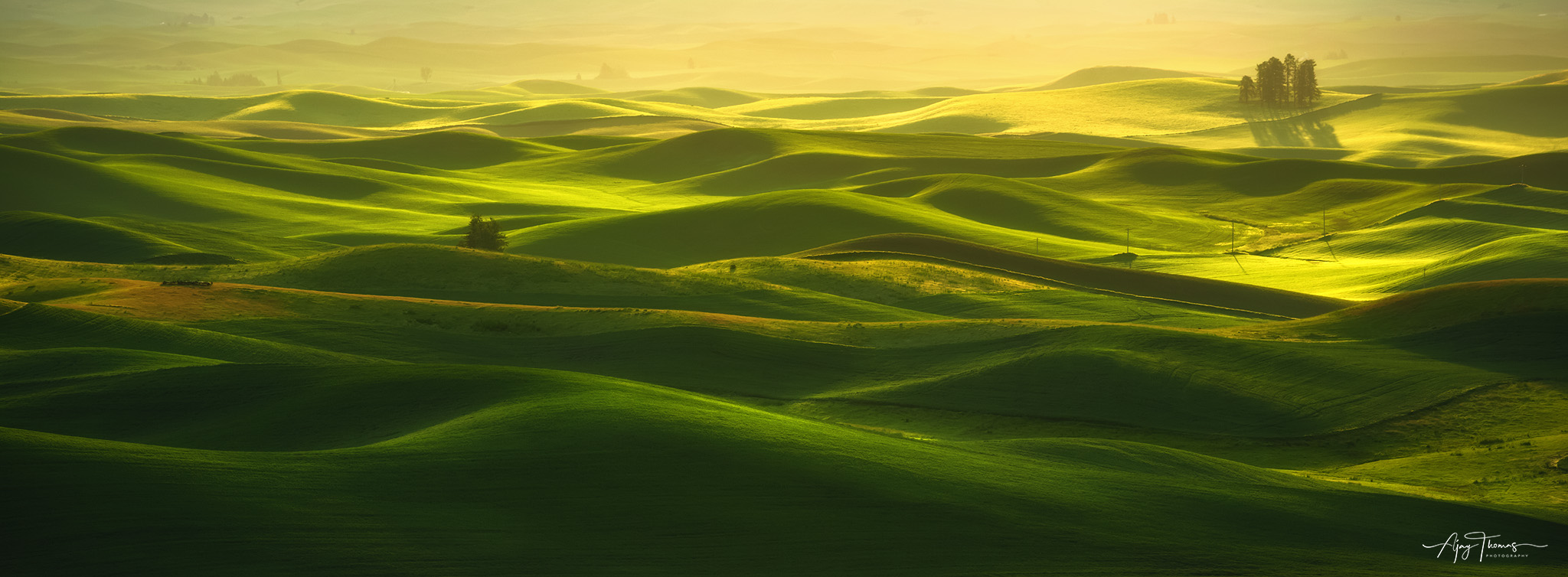 """Sometimes referred to as """"America's Tuscany,"""" the Palouse region of Washington and Idaho is an expanse of rolling hills..."""